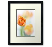 Finally Sunshine... Framed Print