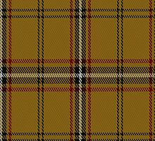 01754 Bro-Dreger Tartan Fabric Print Iphone Case by Detnecs2013