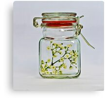 Spring in the jar. Canvas Print