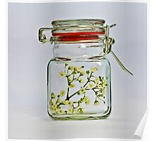 Spring in the jar. Poster