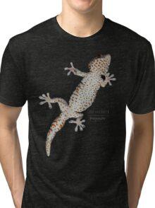 Gekko gecko Tri-blend T-Shirt