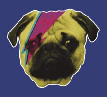 Puggy Stardust by Blair Campbell