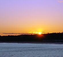 I'll Follow The Sun by ©Dawne M. Dunton