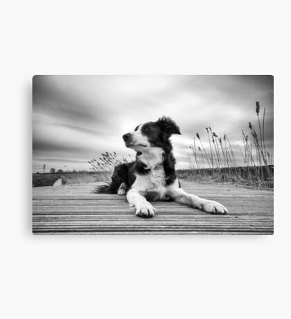 Wide Angled Mila Canvas Print