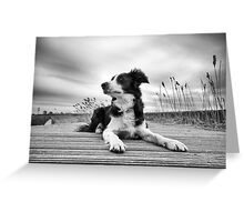 Wide Angled Mila Greeting Card