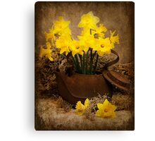 Rusty Teapot in the Spring Canvas Print