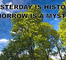 YESTERDAY IS HISTORY TOMORROW IS A MYSTERY by RainbowArt