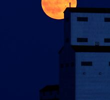 Full moon behind Tuxford grain elevator by pictureguy