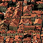 The Red Rooftops of Dubrovnik, Croatia by Tricia Mitchell