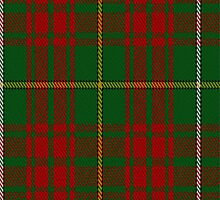 01786 Bruce Hunting Clan/Family Tartan Fabric Print Iphone Case by Detnecs2013