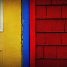 Primary Colours by Amanda White