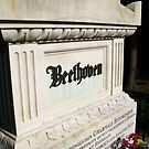 Beethoven Zentralfriedhof by Stephen Oravec