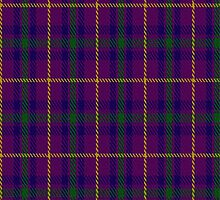 01799 Bryson (2000) Clan/Family Tartan Fabric Print Iphone Case by Detnecs2013