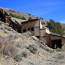 Abandoned,Cold Springs,(Reno) Nevada USA by Anthony & Nancy  Leake