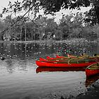 Canoes on the River's Edge by Mary Campbell