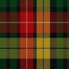 01806 Buchanan #7 Clan/Family Tartan Fabric Print Iphone Case by Detnecs2013