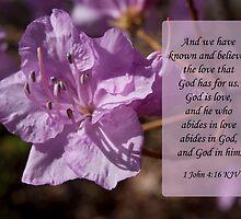 1 John 4:16 by Deborah McLain