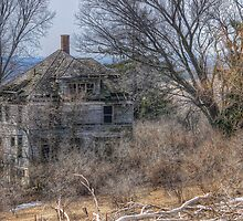 Sagebrush Estate by wiscbackroadz