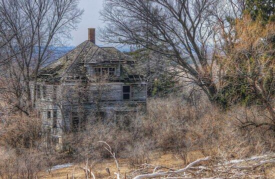 Sagebrush Estate by wiscbackroadz