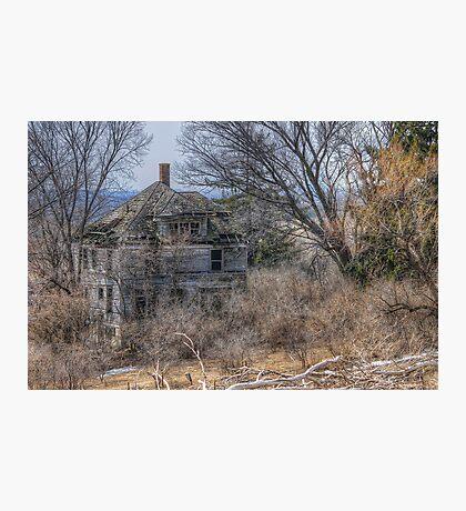 Sagebrush Estate Photographic Print
