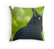 Stone the Crows Throw Pillow