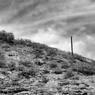 Slopes of Diamond Head by ZWC Photography