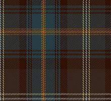 01819 Buglass Tartan Fabric Print Iphone Case by Detnecs2013