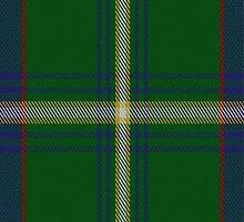 01824 Bundanoon District Tartan Fabric Print Iphone Case by Detnecs2013