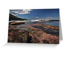 Low Tide Colours Greeting Card