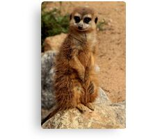 What You Saying? Canvas Print