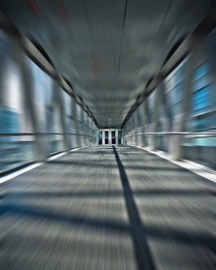 Skydome Dreamwalk by Brian Carson