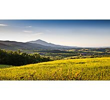 Tuscan Gold Photographic Print