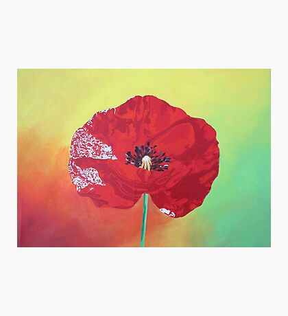 Single Stem Poppy On Red Green And Orange Background Photographic Print
