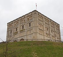 Norwich Castle Norfolk England by Keith Larby