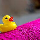 Rubber Duck! by HRLambert