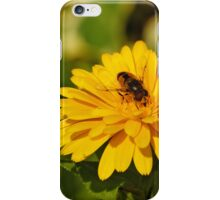 Bee iPhone Case iPhone Case/Skin