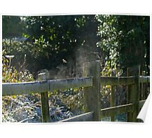 Fence Steaming in Sun in Frosty Weather Poster