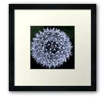 White Ball Framed Print
