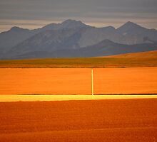 High Plains of Alberta with Rocky Mountains in distance by pictureguy