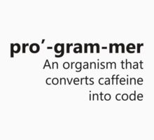 Pro'-gram-mer by AndyCr15