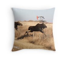 Young moose leaping over barbed wire fence Throw Pillow