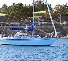 Moored in the Harbor by DaveKoontz