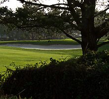 Serenity at the Golf Course by DaveKoontz