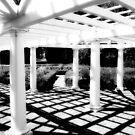 Garden Shadows # 2 by David Schroeder