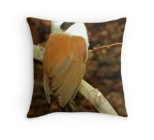 White-crested Laughing Thrush  Throw Pillow