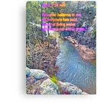 At the Fork Below the Falls  Canvas Print