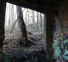Graffiti & Nature by DreamCatcher/ Kyrah Barbette L Hale