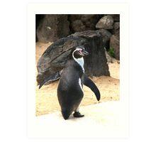 Penguin Shot Art Print