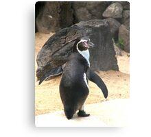 Penguin Shot Metal Print