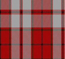 01858 Cameron Hose Artefact Tartan Fabric Print Iphone Case by Detnecs2013
